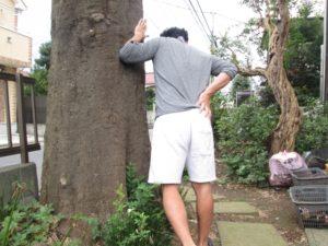 木に寄りかかる男性